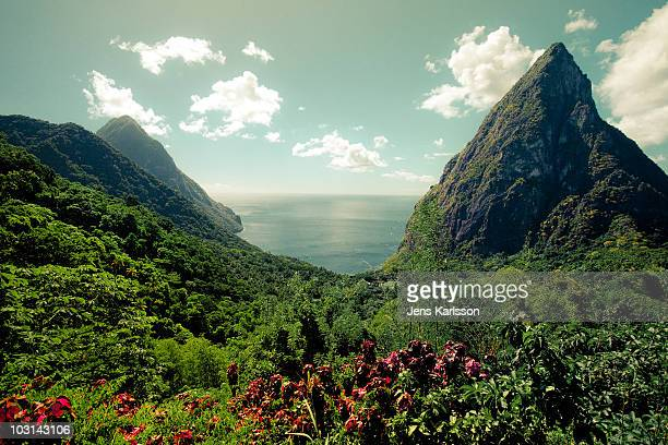 st lucia pitons - st. lucia stock pictures, royalty-free photos & images