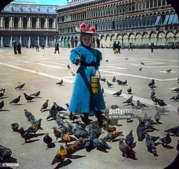 St Mark's Square is a lovely picture the famous pigeons of St Mark They are so tame that they occasionally fly up on the arm and shoulder of visitors...