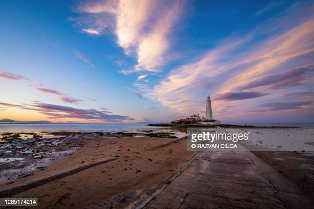 st. mary's lighthouse - tide stock pictures, royalty-free photos & images