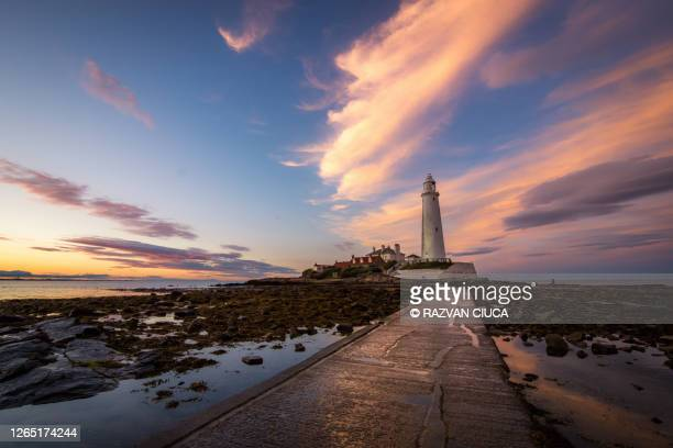 st. mary's lighthouse - lighthouse stock pictures, royalty-free photos & images