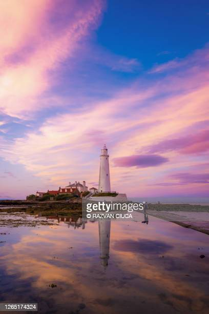 st. mary's lighthouse - local landmark stock pictures, royalty-free photos & images