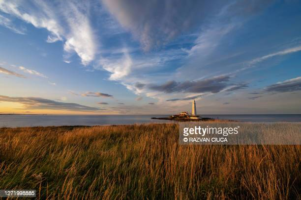 st. mary's lighthouse - human interest stock pictures, royalty-free photos & images
