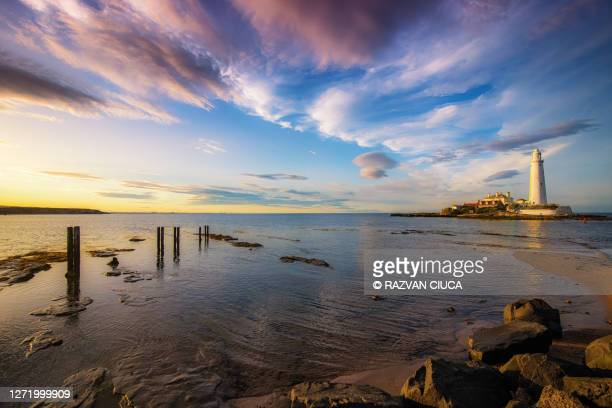 st. mary's lighthouse - majestic stock pictures, royalty-free photos & images