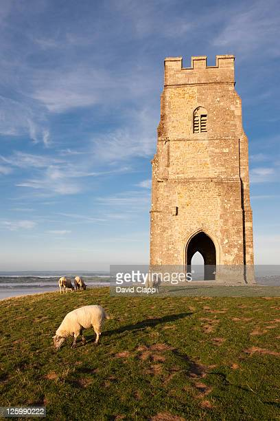 st. michael's tower on top of glastonbury tor with somerset levels in distance, england, uk - glastonbury england stock pictures, royalty-free photos & images