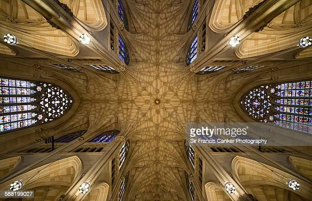st patrick's cathedral ceiling, new york city - st. patricks cathedral manhattan stock photos and pictures