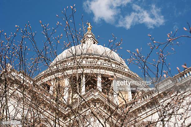 St Paul's Cathedral Dome in early Springtime