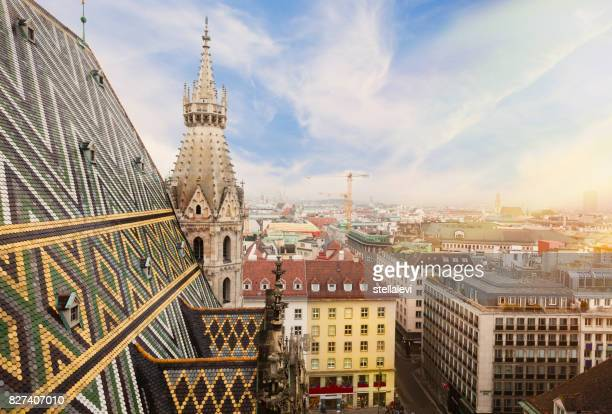 st. stephen cathedral in vienna, austria - vienna austria stock pictures, royalty-free photos & images