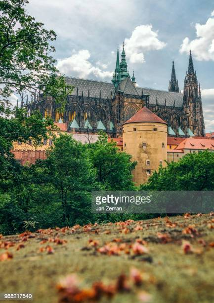 St. Vitus Cathedral and Powder Tower