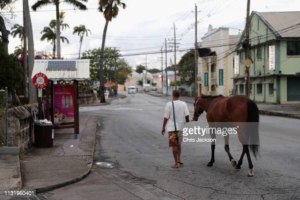 Stableboy walks his horse down to the sea from the Barbados Garrison Savannah early in the morning on March 22, 2019 in Bridgetown, Barbados. The...