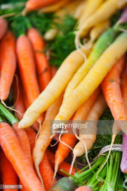 stack of colorful carrots - gwengoat stock pictures, royalty-free photos & images