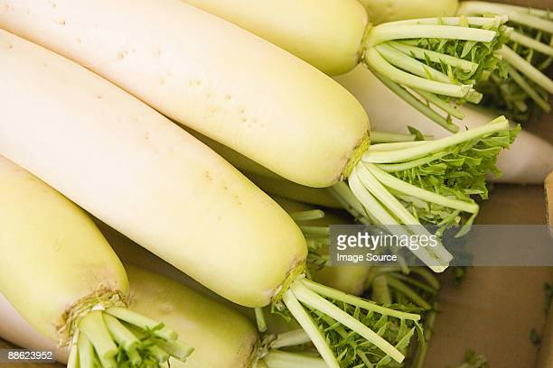 stack of daikon - dikon radish stock photos and pictures