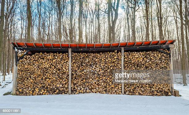 Stack Of Firewood On Snow Covered Field