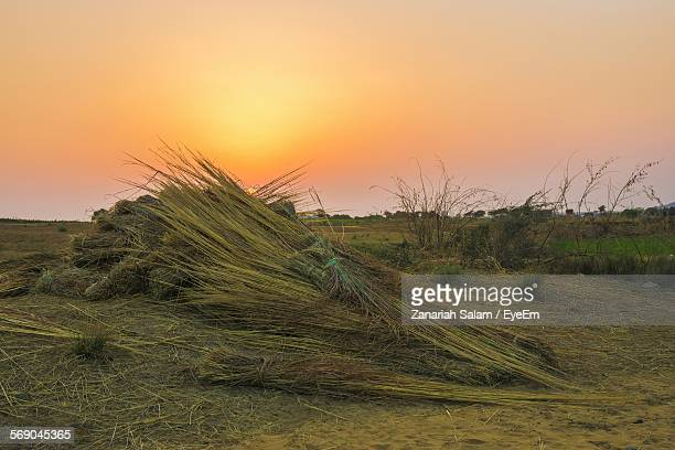 Stack Of Hay On Field Against Clear Sky At Sunset