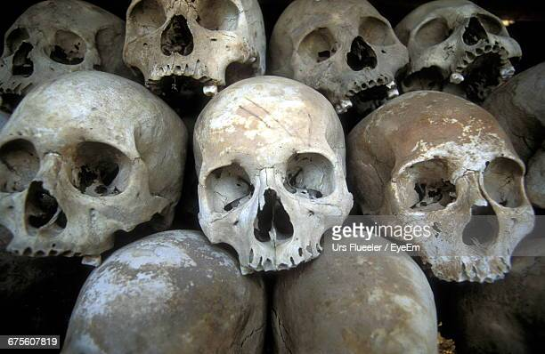 stack of human skulls - human skull stock pictures, royalty-free photos & images