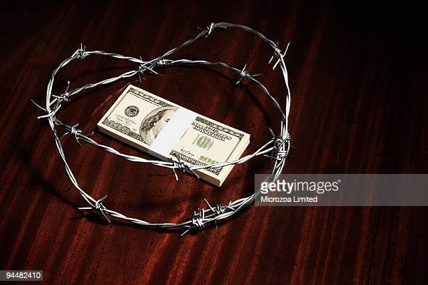 stack of hundred dollar bills surrounded by barbed wire - microzoa stock pictures, royalty-free photos & images