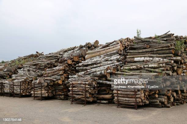 stack of logs against clear sky - district heating plant stock pictures, royalty-free photos & images