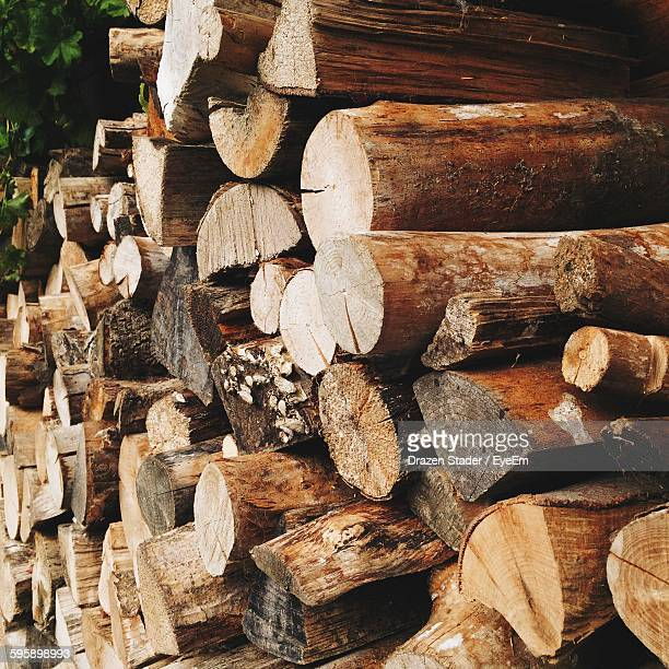 Stack Of Logs At Forest