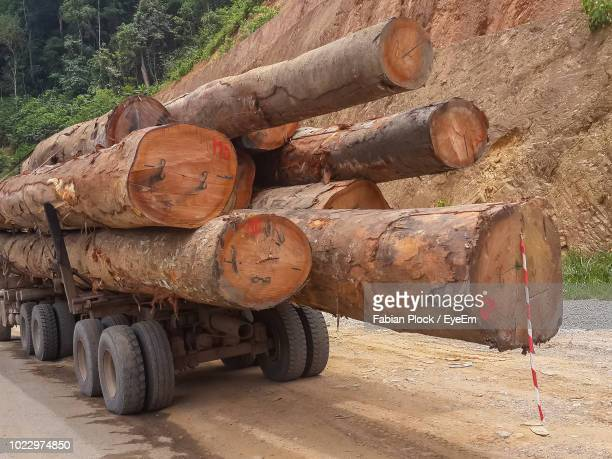 stack of logs on logging truck in rainforest of gabon, africa - gabon stock pictures, royalty-free photos & images