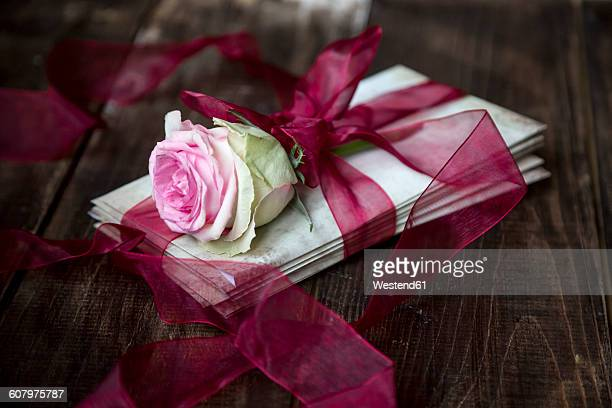 stack of old love letters and rose blossom tied with red ribbon - love letter stock photos and pictures