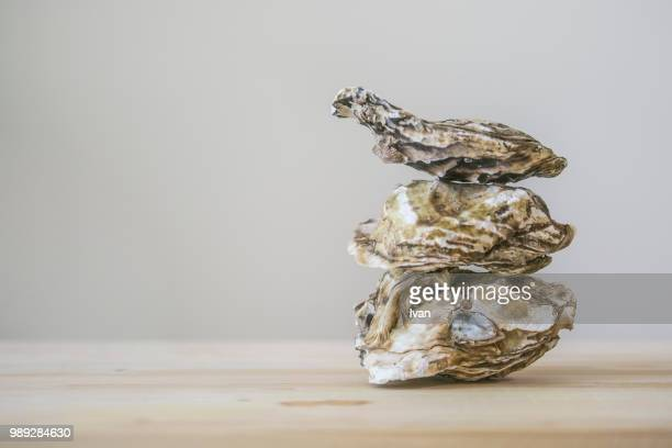 stack of oyster on wooden plate - oyster shell stock photos and pictures