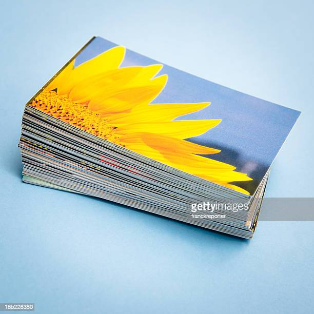 Stack of printed colorful images about spring sunflower