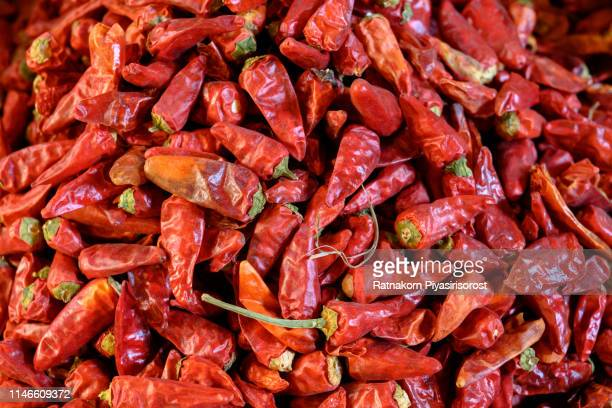 stack of red dry chilli in fresh market - pimientos fotografías e imágenes de stock