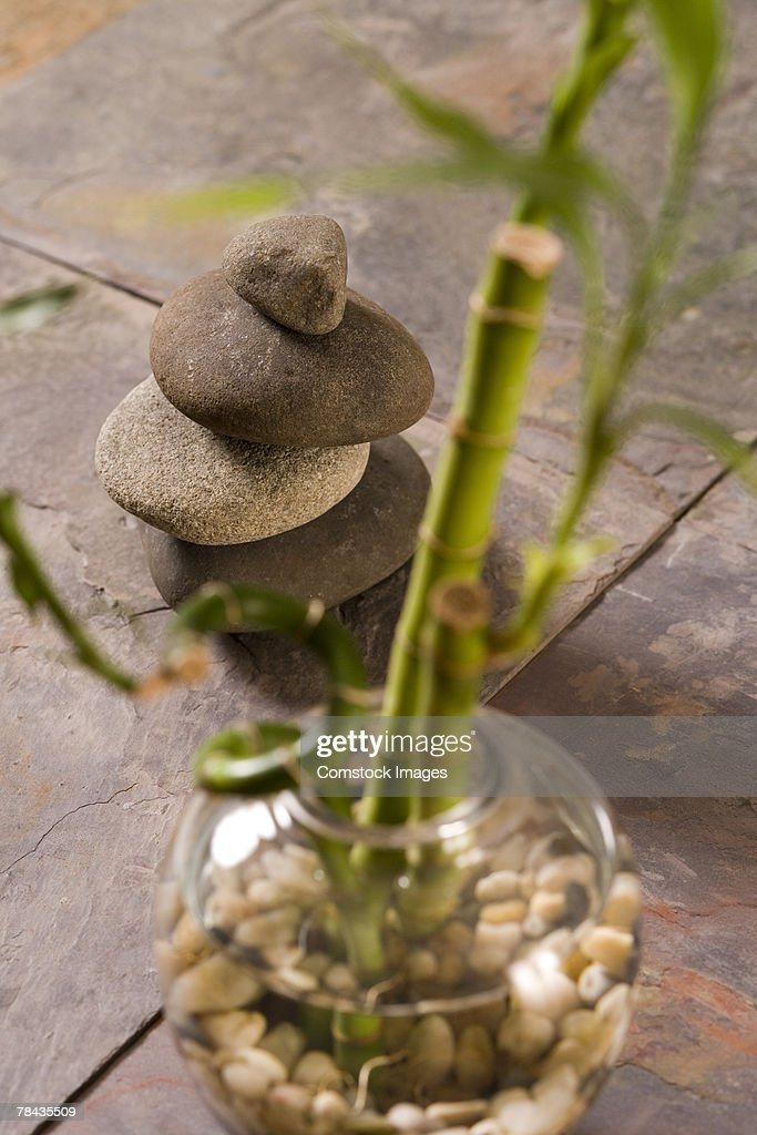 Stack of stones and bamboo plant : Stockfoto