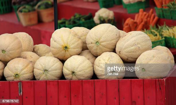 Stacked Cantaloupes for sale at a farmers market in Ontario, Canada