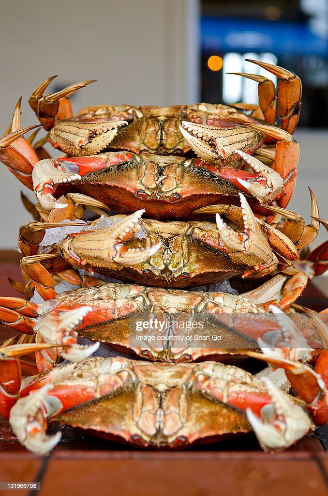 Stacked crabs : Stock Photo