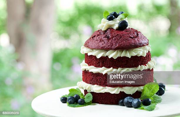 Stacked red velvet cake with whipped cream and blueberries Irish Hollow Galena IL