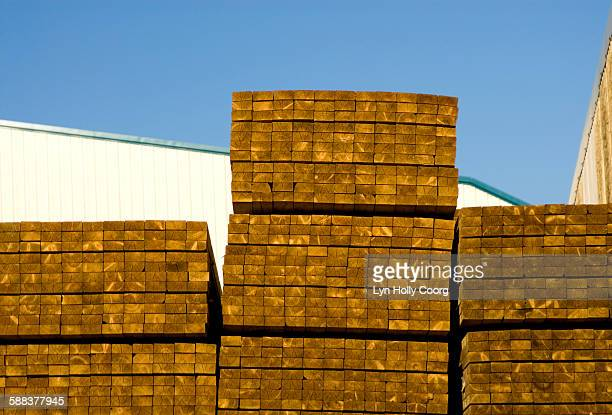 stacked timber in yard - lyn holly coorg stock photos and pictures