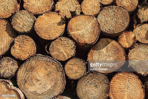 stacked wood - achim thomae stock-fotos und bilder