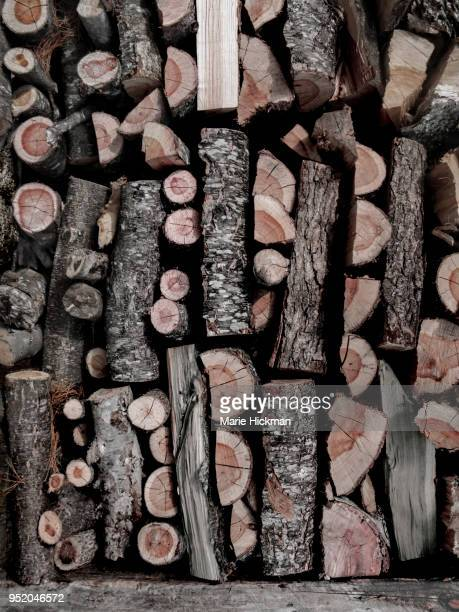 Stacked WOOD PILE in Massachusetts.