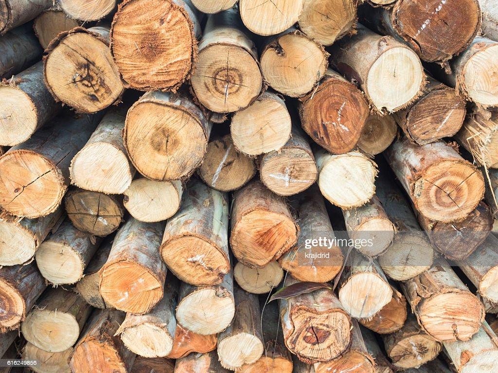 Apilado de madera de pino madera  : Foto de stock