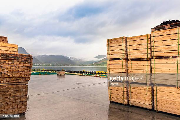 Stacked wooden planks at fishing industry