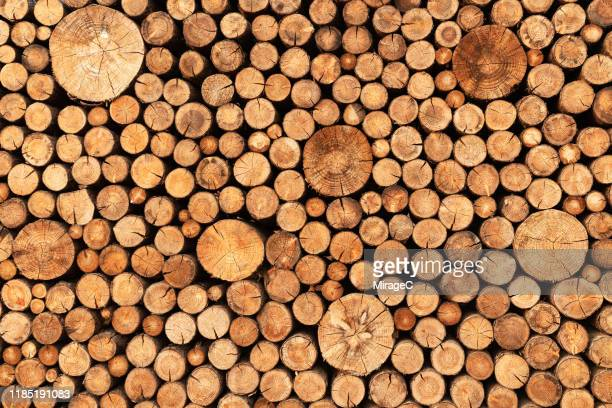 stacking wooden logs - log stock pictures, royalty-free photos & images