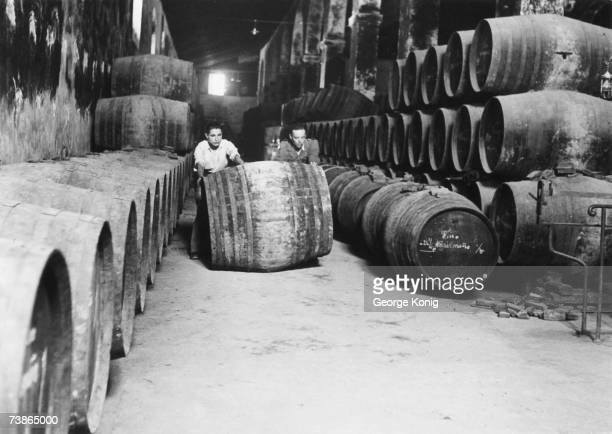 Stacks of barrels in the cellar of the Bodegas Sanchez Romate in Jerez de la Frontera the sherry capital of the world June 1950