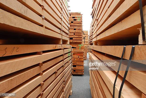 Stacks of beech boards