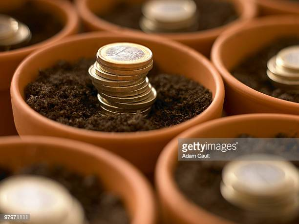 Stacks of Euro coins growing in flowerpots