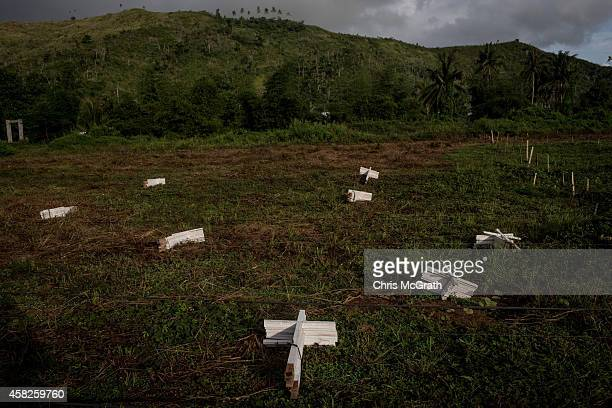 Stacks of white crosses are seen on the ground in the unfinished section of a newly constructed mass grave for 3,000 typhoon Haiyan victims on the...