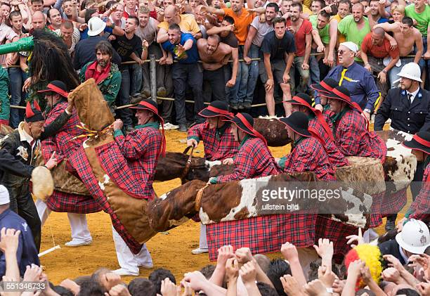 Stadtfest Doudou in Mons