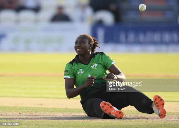 Stafanie Taylor of Western Storm celebrates a wicket of Hayley Matthews of Southern Vipers during the Women's Kia Super League Final between Southern...