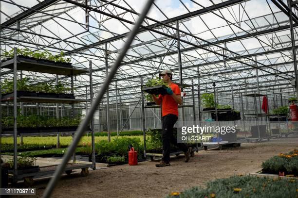 27 379 Garden Centre Photos And Premium