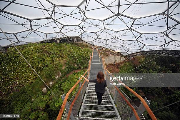 Staff at the Eden Project get to have their first view of the biggest rainforest in captivity from Eden's new Rainforest Lookout on September 6 2010...