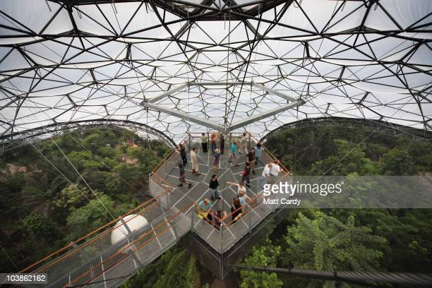 Staff at the Eden Project get to have their first walk above the biggest rainforest in captivity from Eden's new Rainforest Lookout on September 6...