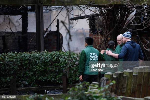 Staff members console each other as they survey the damage after a fire destroyed a number of buildings at London Zoo on December 23 2017 in London...