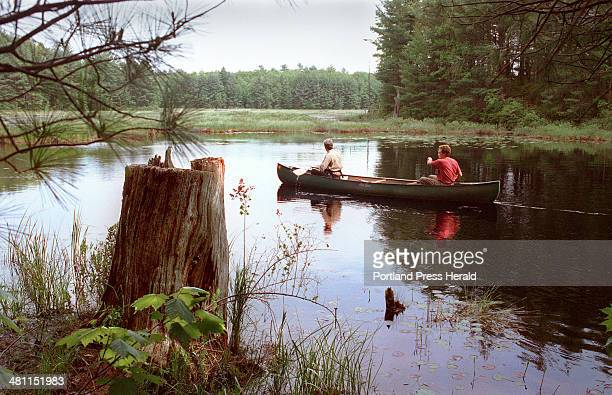 Staff Photo by Doug Jones Thursday June 15 2000 Philip deMaynader a wildlife biologist with Maine's Department of Inland Fisheries and Wildlife left...