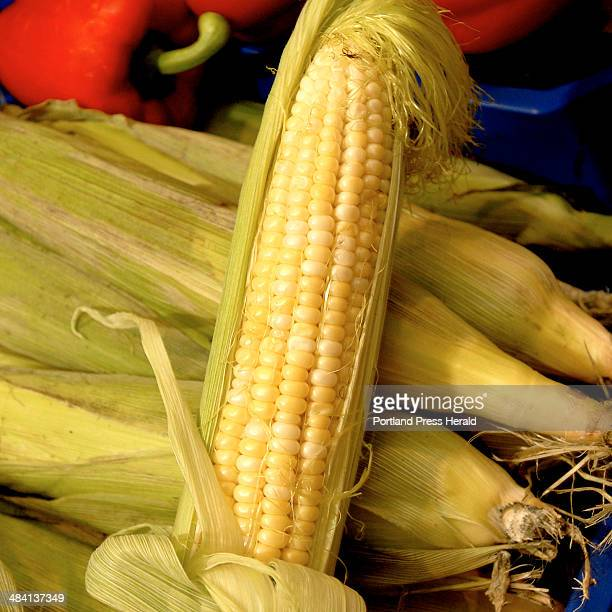 Staff Photo by Gordon Chibroski. August 28, 2006. -- Maine Food Products. Corn from Gillespies Farm, North Yarmouth, Maine. Courtesy of Rosemont...