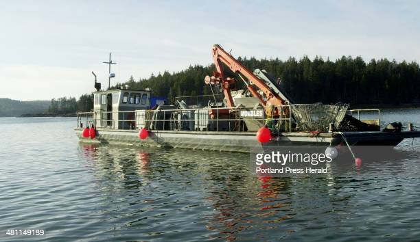 Staff Photo by John Ewing Sat Dec 21 2002 The barge Mumbles processes mussels from aquaculture rafts belonging to Great Eastern Mussel Farms as well...