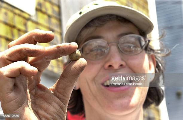 Staff Photo by John Patriquin Tuesday June 7 2005 Lead archeaologist Martha Pinello displays a clay marble found today during a dig outside the...